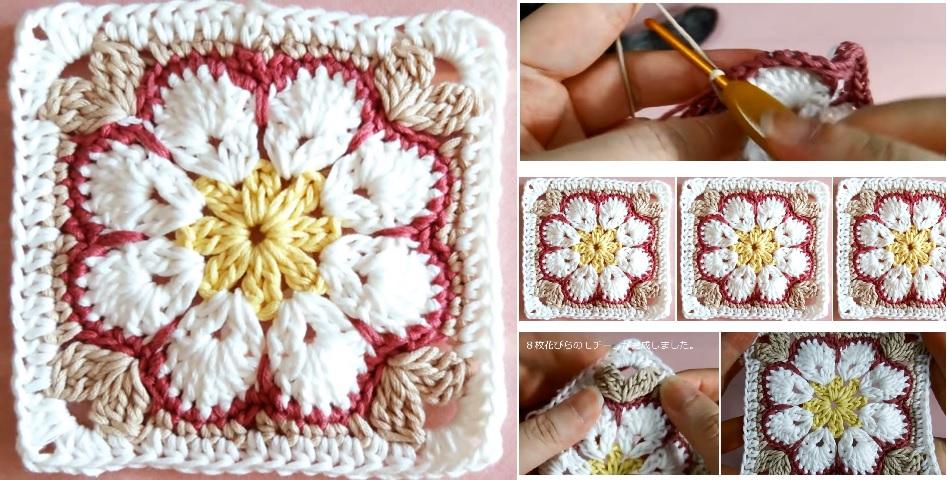 African Flower Square Blanket Flowers Healthy